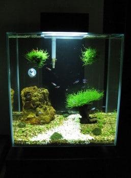 Fluval Edge Aquarium with LED upgrade and Timer